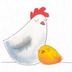 galinha e pintinho_thumb[2]